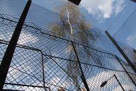 Zaun, Gefängnis, Diktatur, Grenze (Symbolbild)