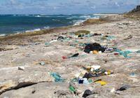 Überall auf der Welt: Plastikmüll am Meeresstrand. Bild: W. Weitlaner