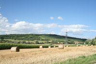 Heimat: Hier das schöne Badnerland im Südwesten Deutschlands zur Sommerzeit.