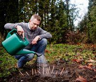 Michael Stausholm, Gründer und CEO von Sprout World  Bild: Sprout World Fotograf: Sprout World