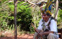 Nach der Rückkehr auf ihr angestammtes Land werden die Guarani oft Opfer gewalttätiger Überfälle durch Söldner.  Bild: Survival