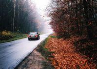 "Herbst Bild: ""obs/CODUKA GmbH/k.A. (Pixabay)"""