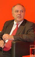 Matthias Machnig (2010)