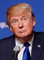 Donald Trump (2015)