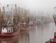 Fischereihafen: EU-Flotten fahren um die ganze Welt und fischen vor allem in Afrika die Meere leer.