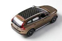 Auto: Prototyp mit nachhaltig gefertigtem Holzdach. Bild: kth.se/en