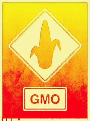 GMO Bild: Environmental Illness Network, on Flickr CC BY-SA 2.0