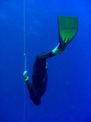 Andreas Güldner bei seinem erfolgreichen Rekordversuch (72 Meter). Bild: Marine