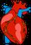 Herz: neuer Biokleber für den Herzmuskel.