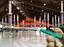 Der Eislauf- und Eishockeybetrieb muß in der Eishalle Regen einem Impfzentrum weichen. Bild: Xgeorg/wikimedia commons/(CC BY-SA 4.0) und Pixapay / Montage Unser-Mitteleuropa