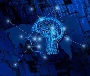 Gehirn im Fokus: Vernachlässigung reduziert Volumen.