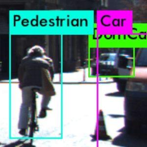 Von Software als Fußgänger identifizierter Radler.