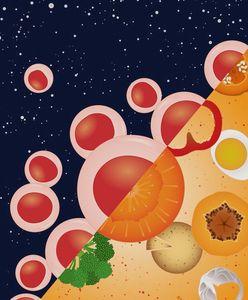 Vitamin A hat eine zentrale Funktion. Bild: Cabezas-Wallscheid/ Andreas Trumpp