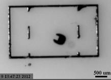 Mini-Roboter der Zukunft: kaum einen Millimeter groß. Bild: cmu.edu