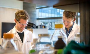 Wissenschaftler im Biolabor der University of California.