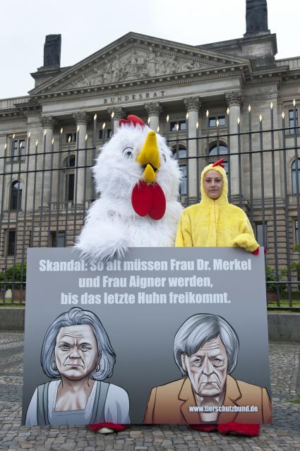 Bild: obs/Deutscher Tierschutzbund e.V.