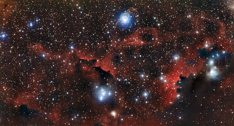 Die leuchtende Gaswolke Sharpless 2-296, ein Teil des Möwennebels Quelle: Bild: ESO (idw)