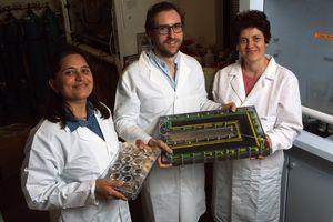 P. Dongare (l.), Alessandro Alabastri und Oara Neumann (r.)