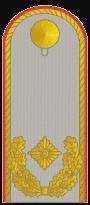 Brigadegeneral  Schulterstück Dienstanzug
