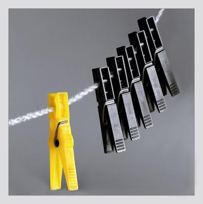 Schwarz - Gelb / Parteien