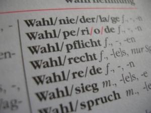 Wahlkampf im Web enttäuscht Wähler. Bild: pixelio.de/Lars Kulesch