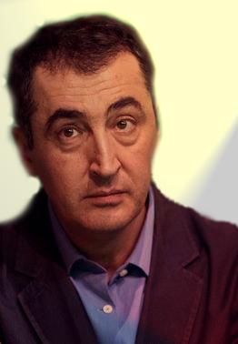 Cem Özdemir (2017)