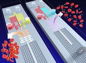 """""""Lab-on-a-Chip"""": Forscher kommen dem Konzept näher. Bild: Lab On a Chip"""