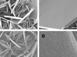 Beschichtete und unbeschichtete Vanadiumdisulfid-Teilchen.
